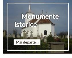 Manastiri Comana